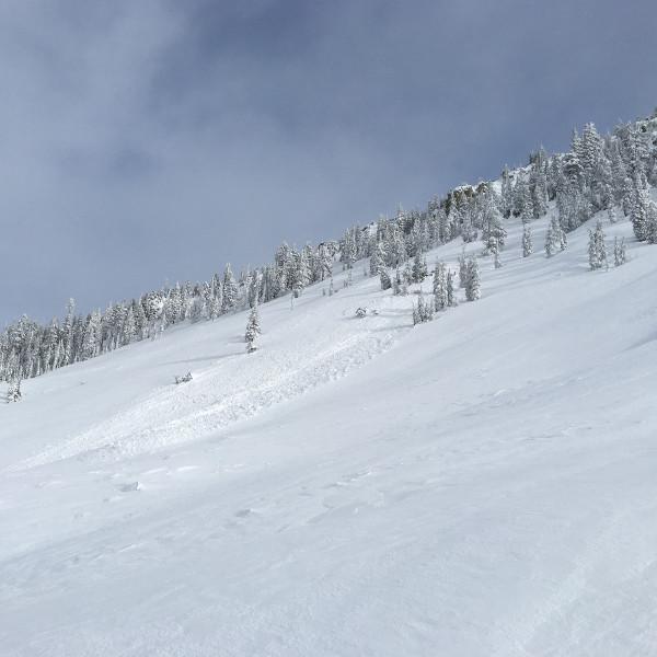 D1 Avalanche Gray Butte