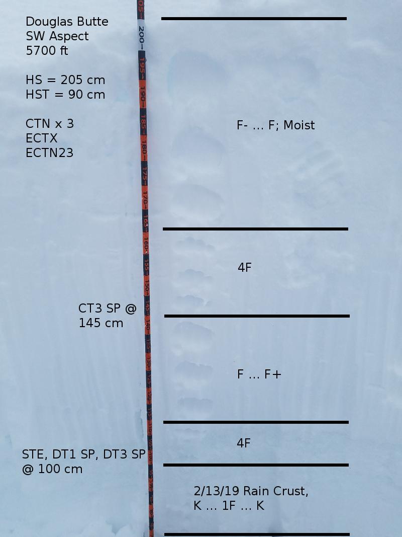 Test Profile
