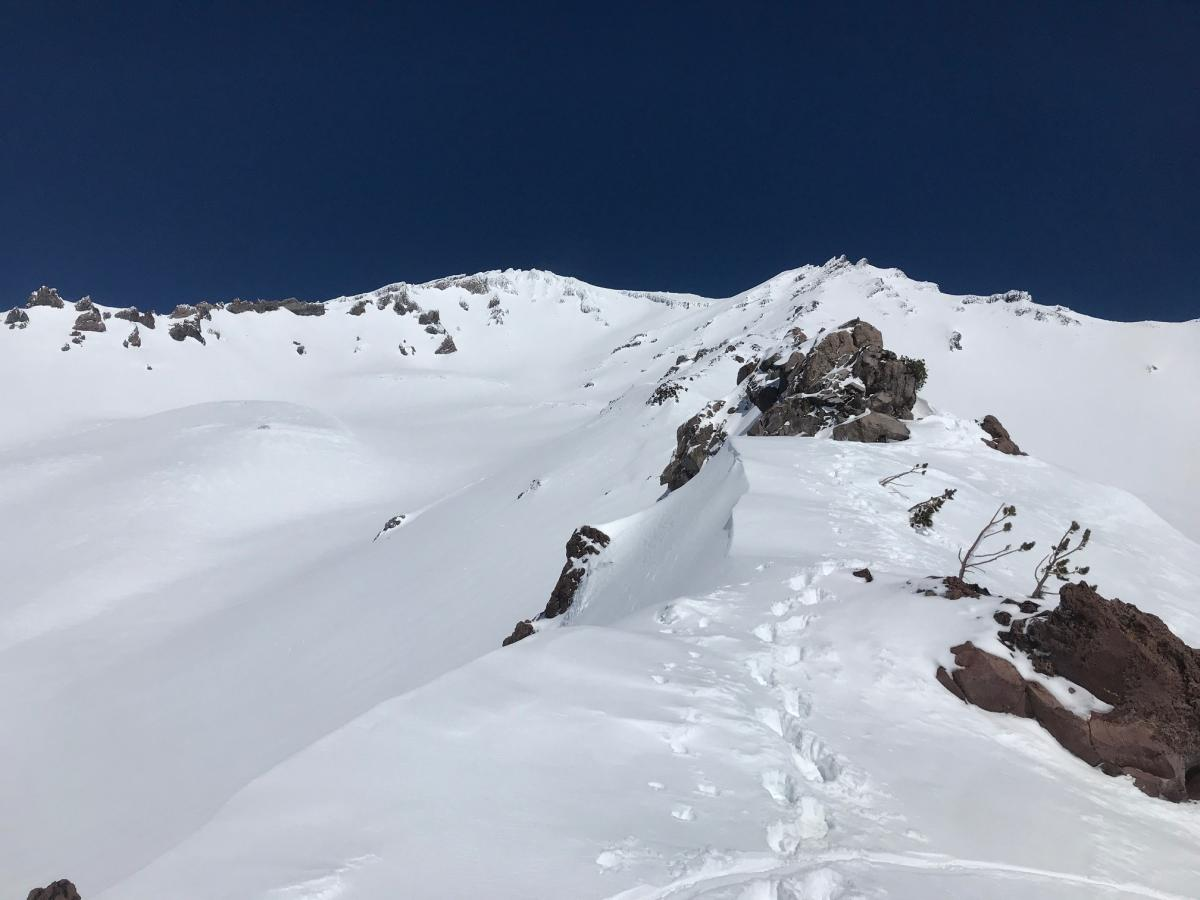 9,500 feet on Green Butte Ridge, looking up the mountain- 3.21.19