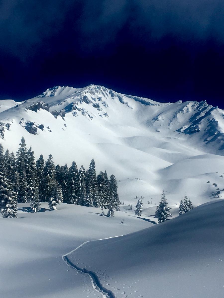 Avalanche Gulch on 3.8.19 - Photo: J. Koster