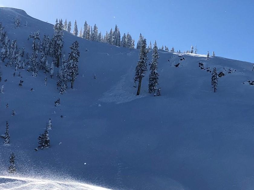 Skier triggered avalanche middle peak, Castle Lake