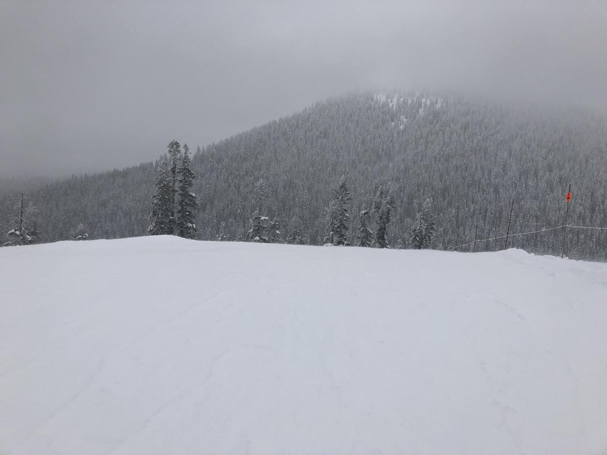Looking towards Gray Butte from Coyote
