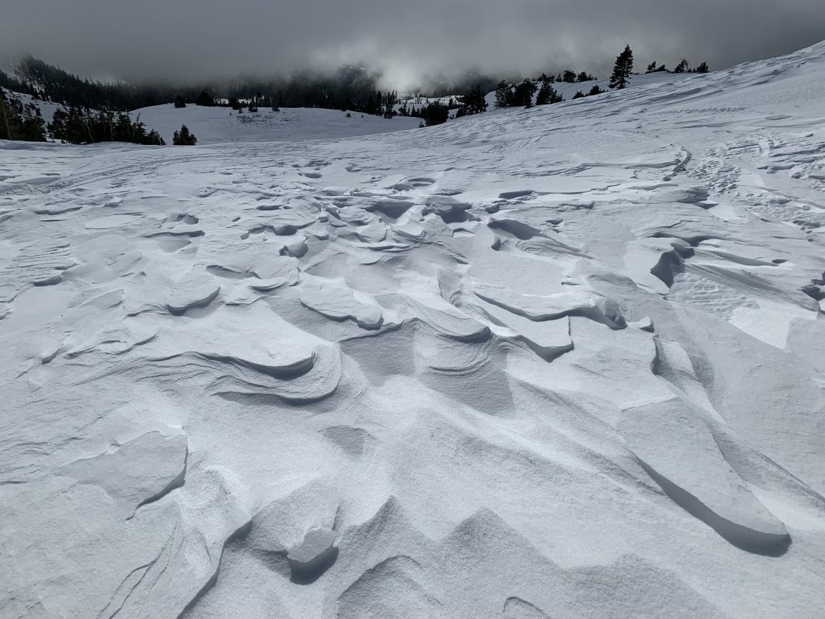 Wind effected snow above treeline, Old Ski Bowl, Mt Shasta, ~9,000 feet