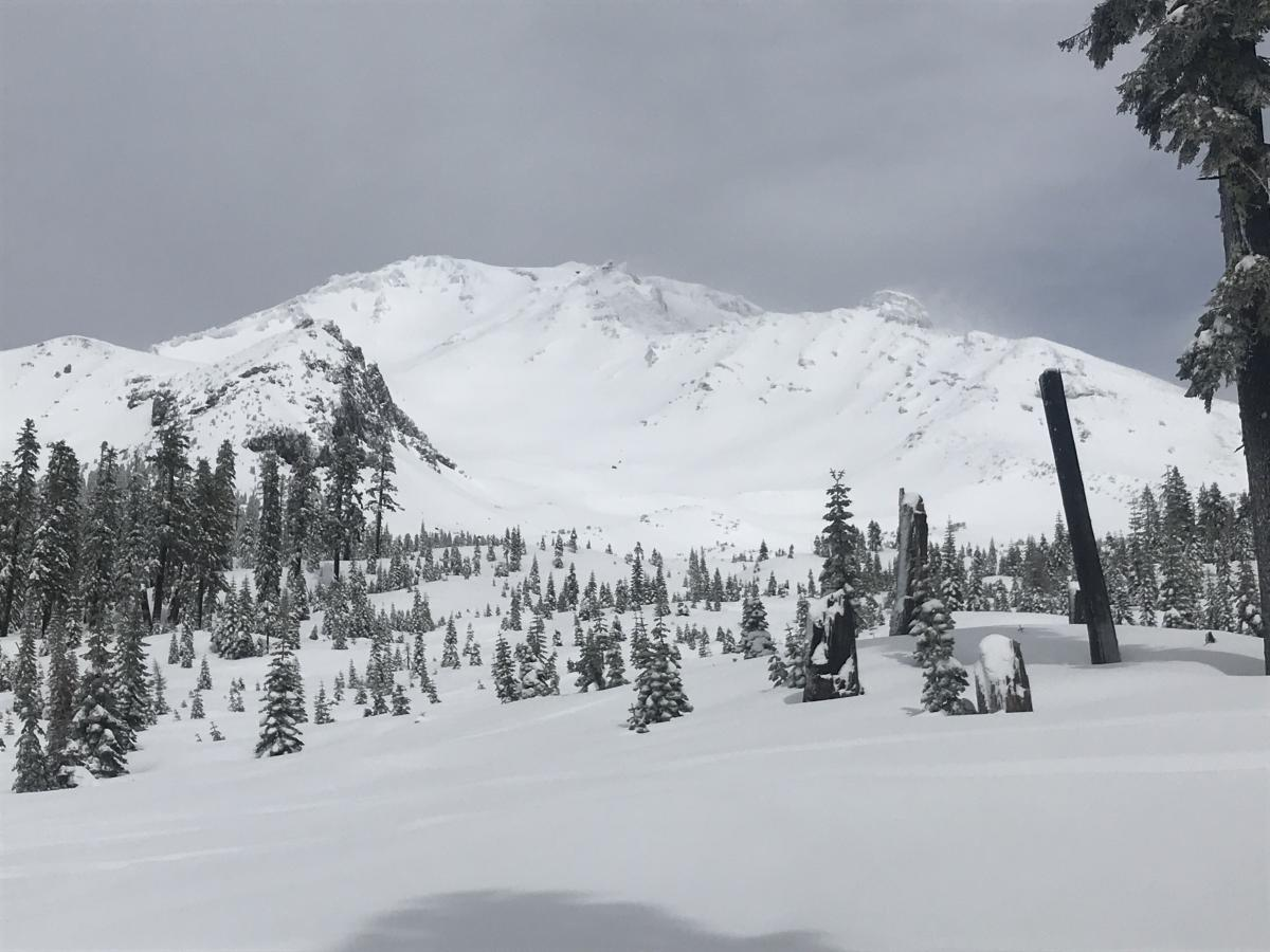 Bottom of the Old Ski Bowl avalanche path