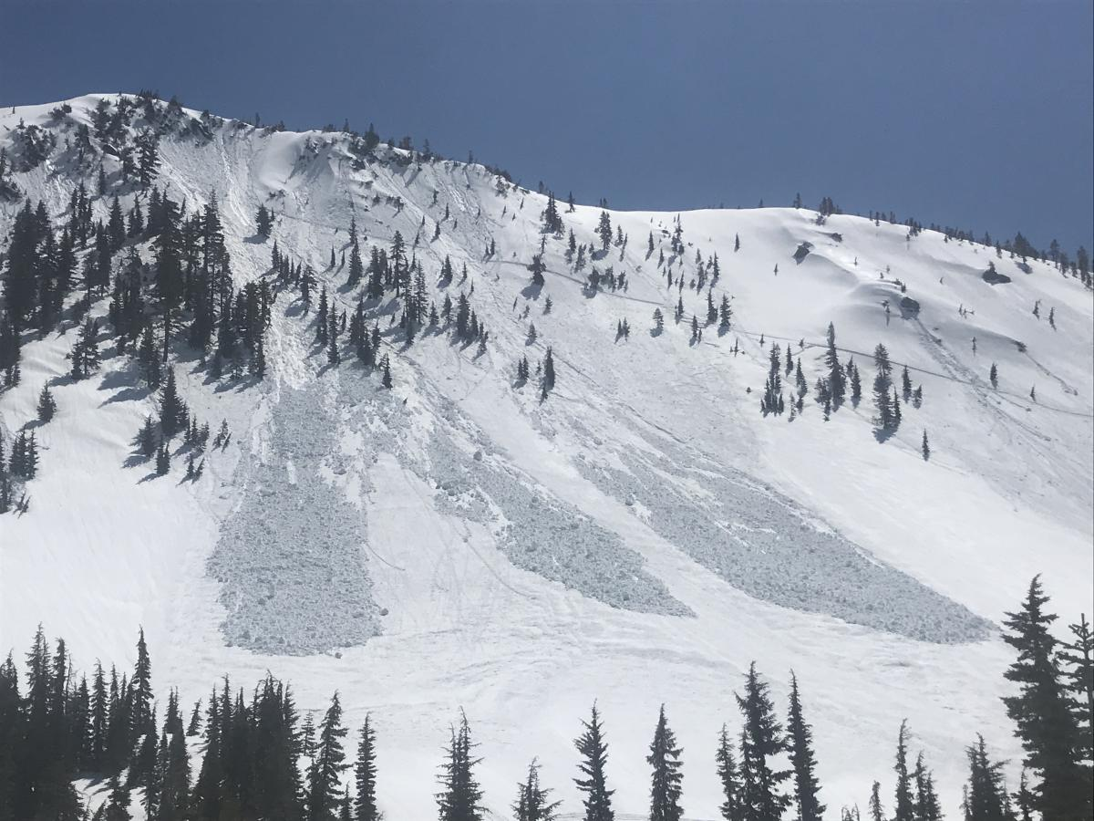 Several natural loose wet avalanches on west facing aspect of Gray Butte, occurring late in the day on 4.9.20