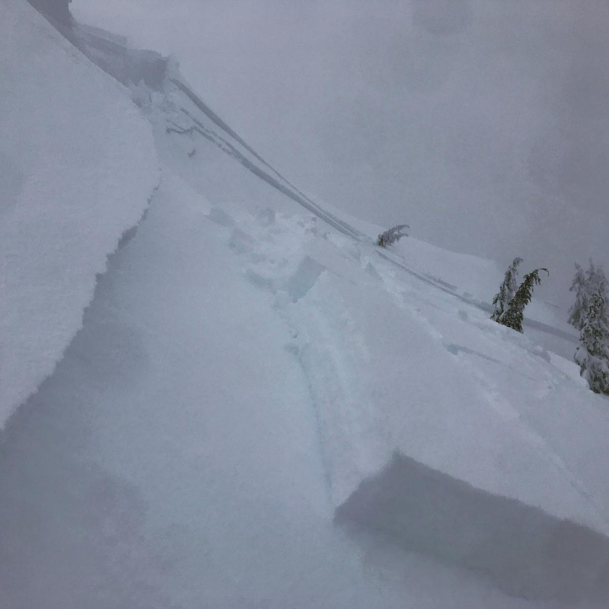 Wind Slab avalanche on Gray Butte