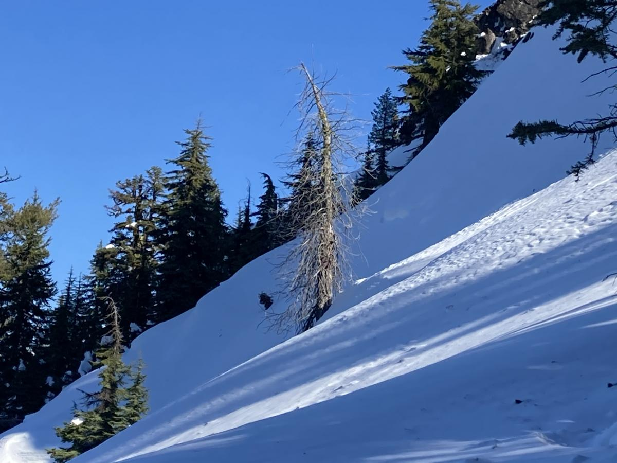 Slope next to recent avalanche that occurred on 2/3/21