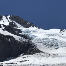 Holtum Glacier.