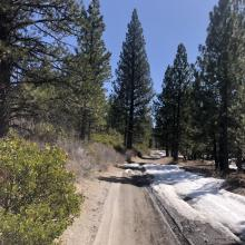 Patchy snow starts near 5,000 feet on Military Pass