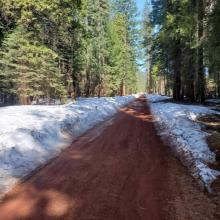 One lane of Military Pass has been plowed due to logging operations.