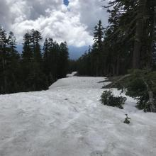 Nearly continuous snow drift exists from 7300'.