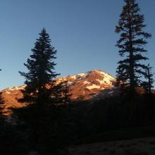 Mount Shasta alpine glow from trail below springs