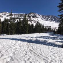 Sierra Alpine Hut (Horse Camp) view east towards Avalanche Gulch