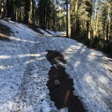 Drift blocking Brewer Creek road 5.11.21