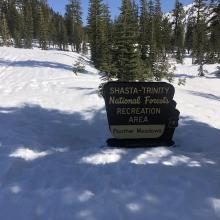 59 inches of snow at Lower Panther Meadow
