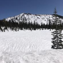 Lower Panther Meadow