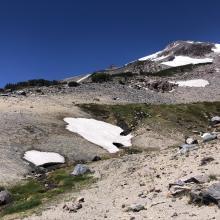 Spring at 8,600 feet.