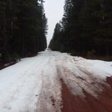 Brewer Creek road, 10.8 miles to trailhead on 4.15.18