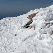 skunk on the summit...
