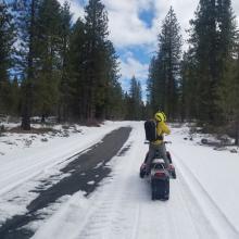 Sparse Coverage Near Pilgrim Creek Snowmobile Park