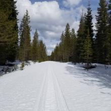 Non-groomed Trail Conditions