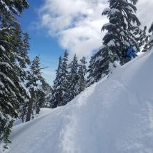 Deeper Dryer Snow on Northerly Aspects