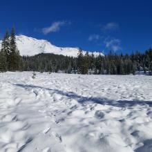 New Snow at Bunny
