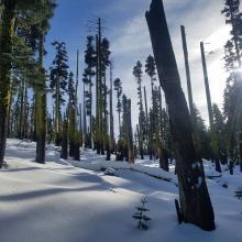 Conditions near Left Peak saddle