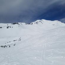 Ski penetration near treeline: ~ 1 in.