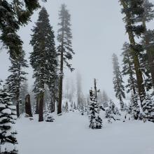 Hazards Exist Below Snow Surface