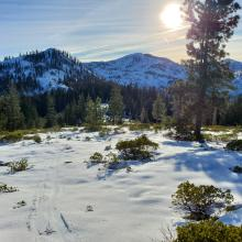 Higher elevations supporting up to 24 inches of snow, but manzanita poking through.