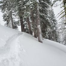Ski penetration 8 inches