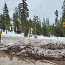 Snowmobile Access at Bunny Flat