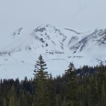 Avalanche Gulch