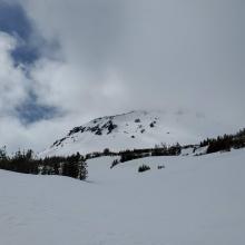 Above Treeline - Brewer Creek Trail