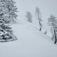 E-NE Facing Aspects - Wind Drifted Snow