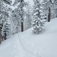 Height of New Snow: 30 cm (12 in)