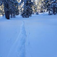 Ski penetration 4-6 in, boot penetration 25 in