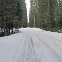 Road at Pilgrim Creek Snowmobile Park