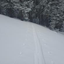 Ski penetration