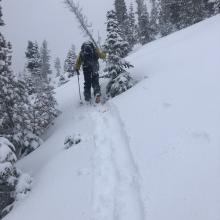 Ski Penetration 4 inches (10 cm)