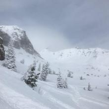 Old Ski Bowl, very deep conditions, no signs of avalanches above treeline