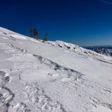 Above treeline, Green Butte ridge