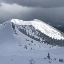 The northwest facing side of Gray Butte. Very little wind effect near and above treeline. Photo: N Meyers