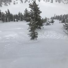 Small D1 wind slab