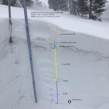 Snow profile above Horse Camp cabin SE aspect 8,000 Feet