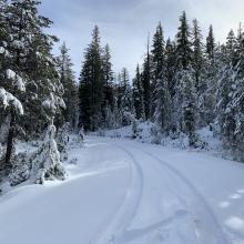 Parks Creek Road conditions