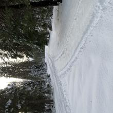 Quite a few 4x4 tracks to navigate at lower elevations