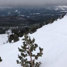 Ski pen 2-4 inches