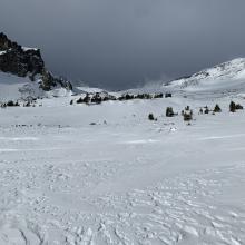Near tree line, Old Ski Bowl